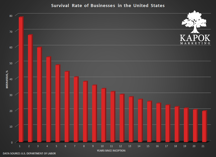 Graph of Survival Rate of Businesses in The United States (21 Years)